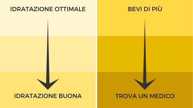 Come controllare il colore delle urine