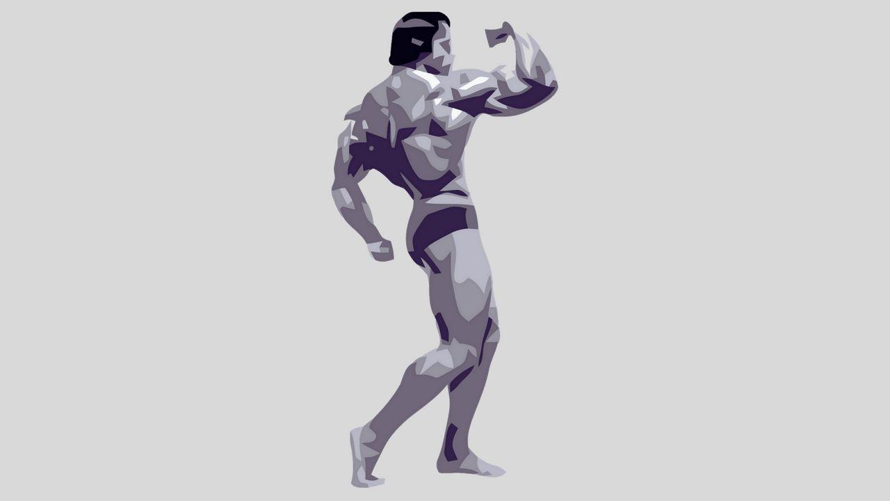 La sagoma di Arnold Schwarzenegger