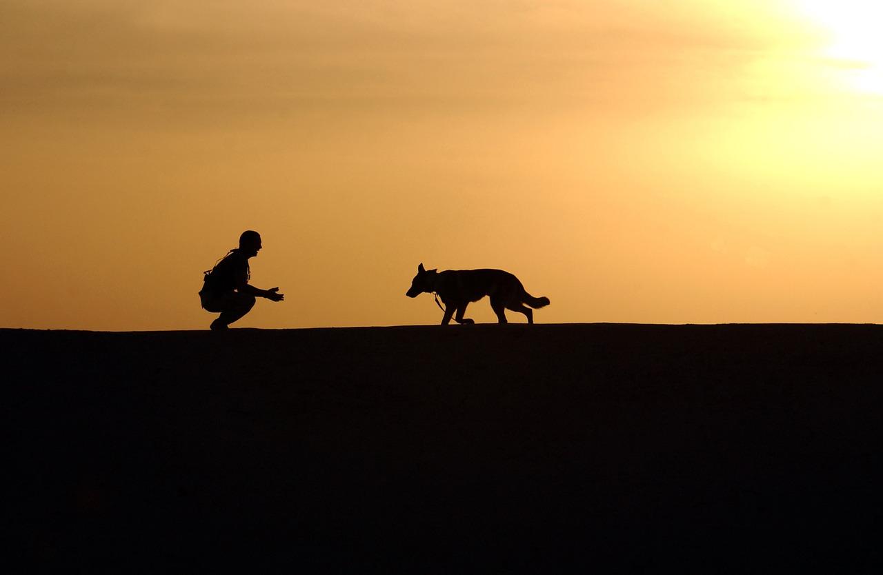 Un cane col suo padrone