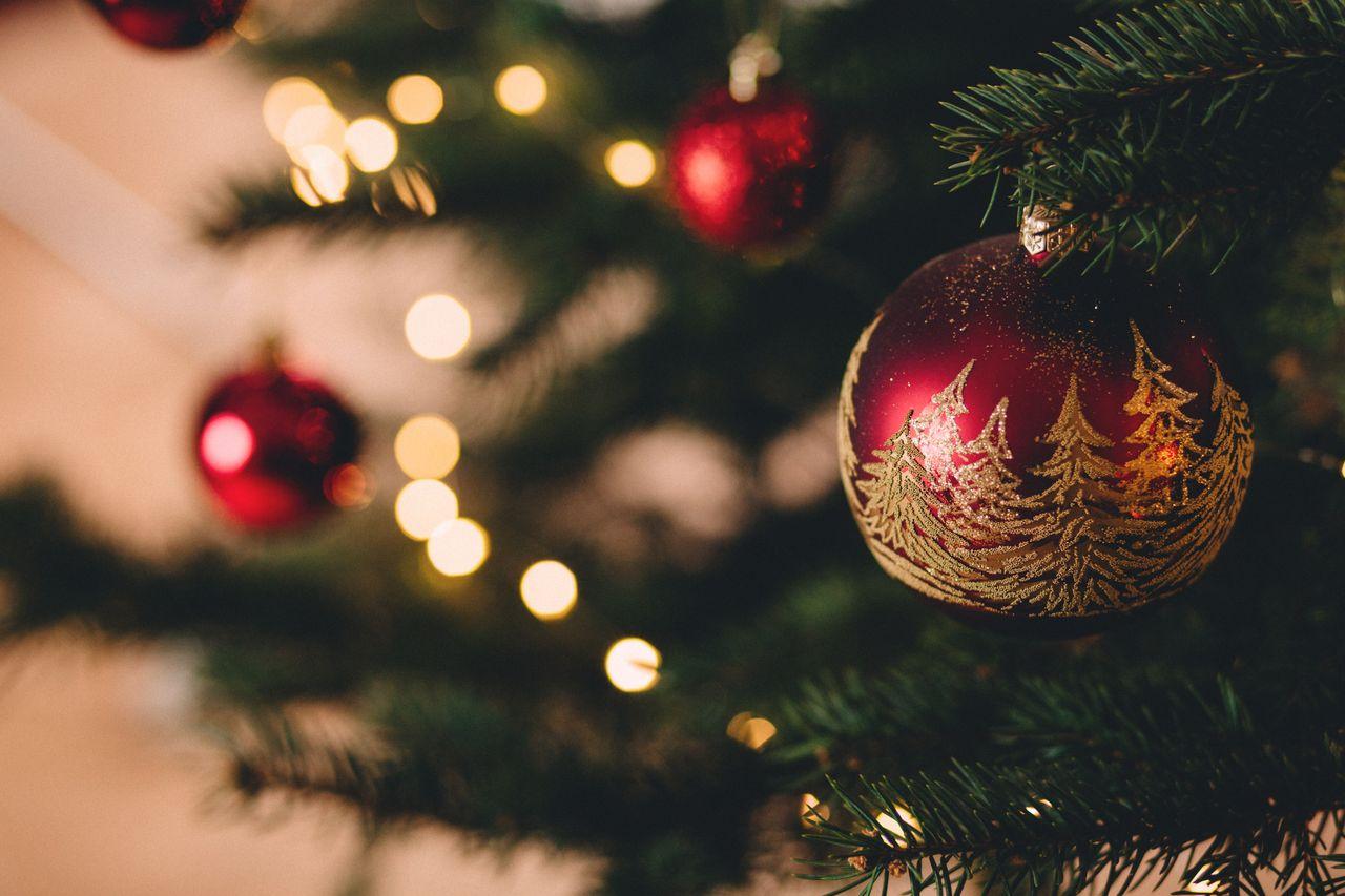 Guida Ai Regali Di Natale.Guida Ai Regali Di Natale Fit